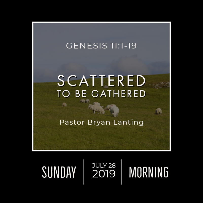 July 28, 2019  Morning Genesis 11 Scattered to be Gathered Lanting Audio Message