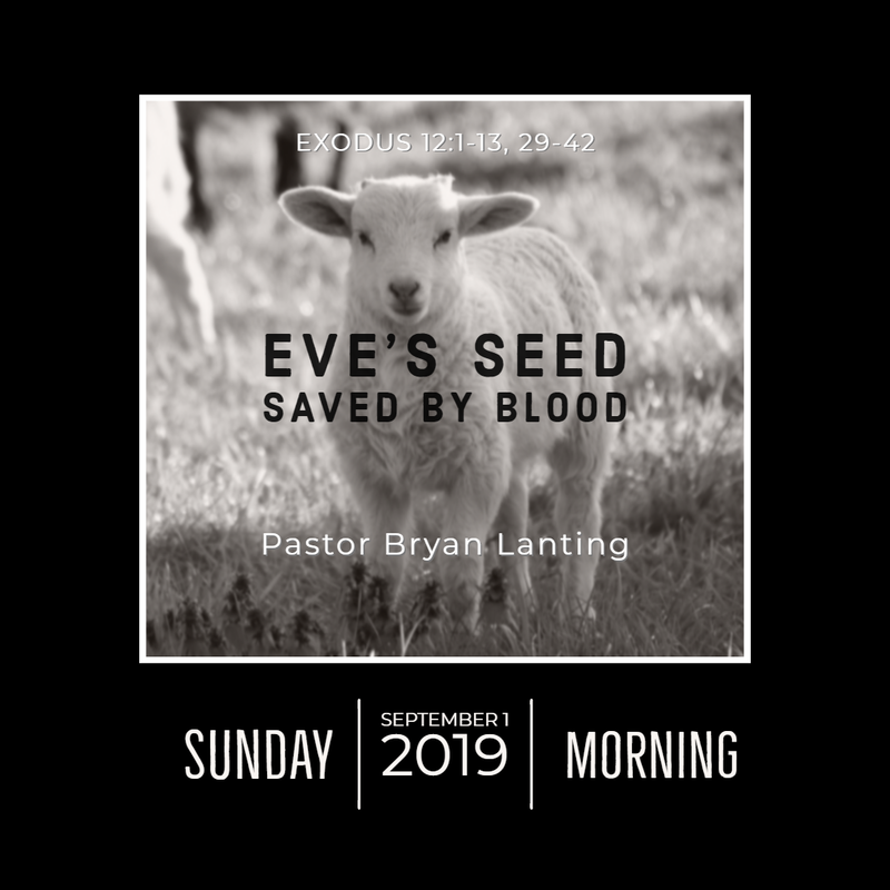 September 1, 2019  Morning Exodus 12 Eve's Seed Saved by Blood Lanting Audio Message